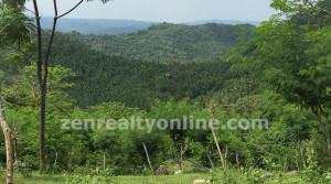 lobo batangas farm land for sale