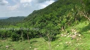 Lobo Batangas Agricultural Farm Land