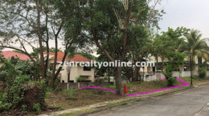 Ayala Westgrove Heights Lot for sale Silang Cavite