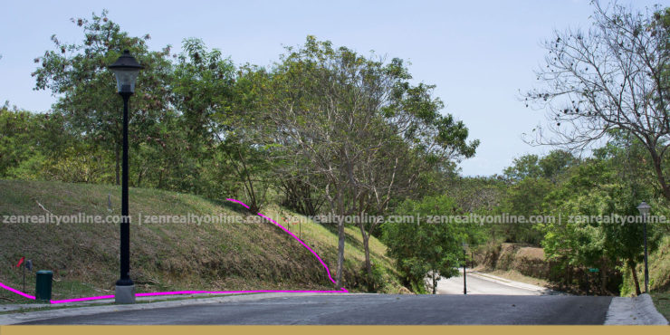 Ayala Westgrove Heights 431 sqm lot for sale