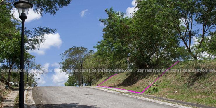 Ayala Westgrove Heights 645 sqm Orchard Park lot