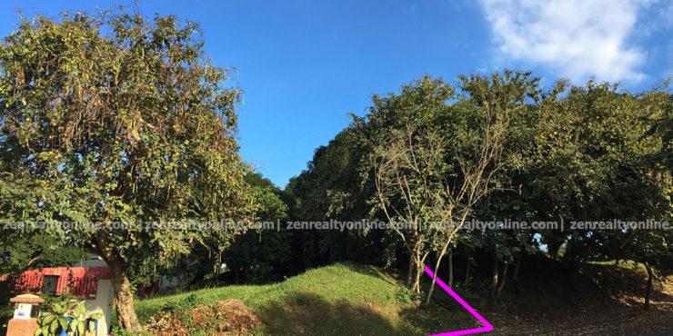 Ayala Westgrove Heights Phase 1 lot